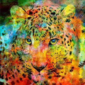 Christian Lange - Leopard