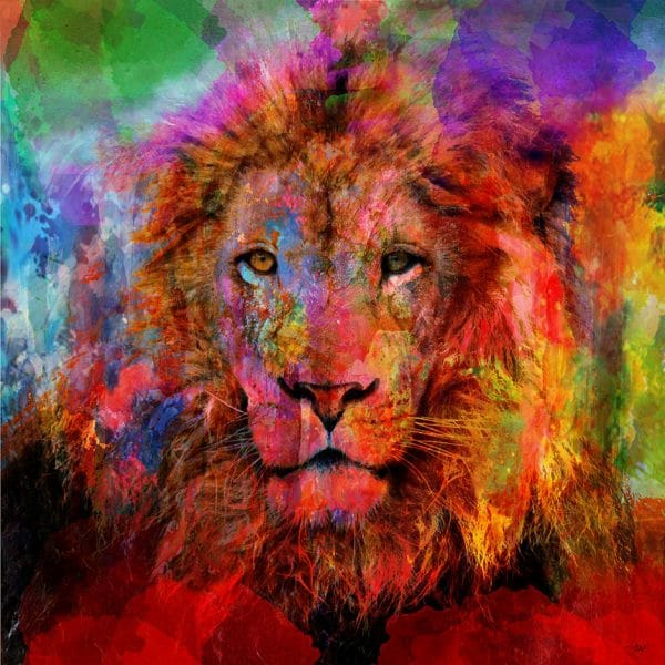 Christian Lange - Lion