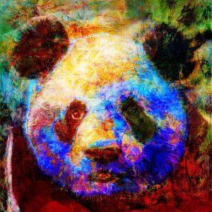 Christian Lange - Panda