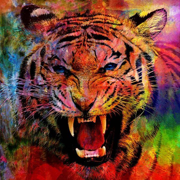 Christian Lange - Tigre