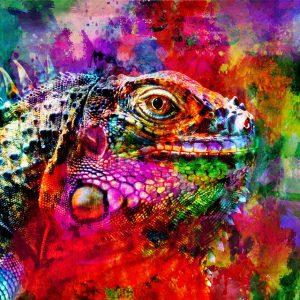 Christian Lange - Iguane